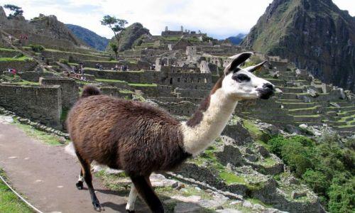 Zdjęcie PERU / Andy / Kordyliery / obecnie stała lokatorka MP