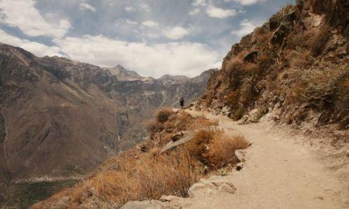 Zdjęcie PERU / Andy / Kordyliery / Kanion Colca