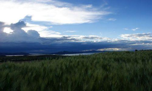 Zdjęcie PERU / Jezioro / Titicaca / Zboże