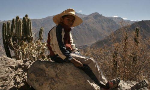 Zdjecie PERU / - / Canion Colca / dziki zachod