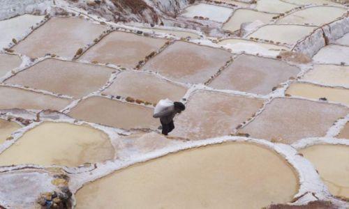 Zdjecie PERU / Maras / Salineras / Z workiem soli