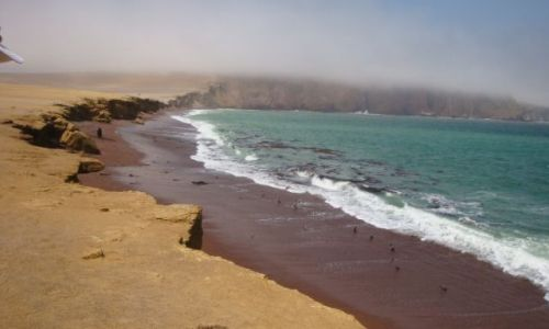 Zdjecie PERU / - / Paracas / Paracas