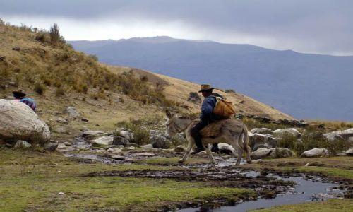 Zdjecie PERU / Okolice Huaraz, Cordillera Blanca / Okolice wioski Pitec / W okolicach wio