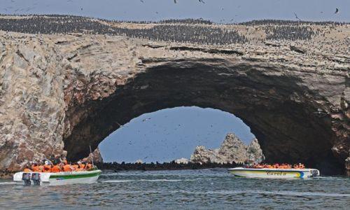 Zdjęcie PERU / Paracas / Paracas / .