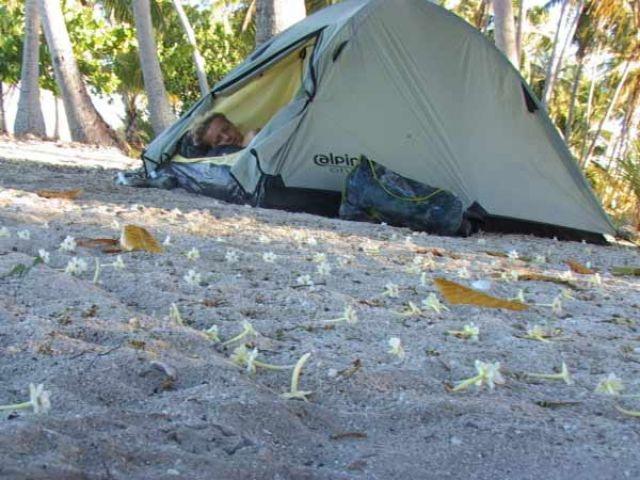 Zdjęcia: środek atolu ( 8 km do wioski) pole namiotowe, Wyspa Fakarava, Dywan ( lepszy niż ten na reklamie PiS), POLINEZJA FRANCUSKA