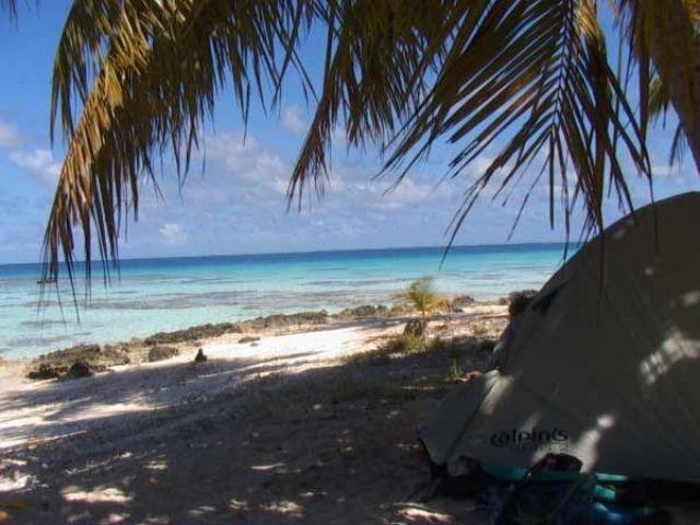 Zdjęcia: środek atolu ( 8 km do wioski) pole namiotowe, Wyspa Fakarava, Pod palmą, POLINEZJA FRANCUSKA