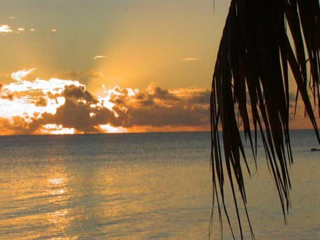 Zdj�cia: �rodek atolu ( 8 km do wioski) pole namiotowe, Wyspa Fakarava, Widok z namiotu, POLINEZJA FRANCUSKA