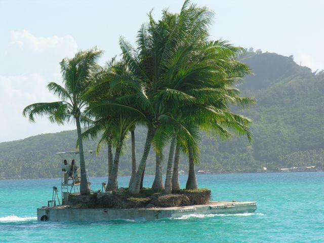 Zdjęcia: Laguna, Bora - Bora , Transport sadzonek, POLINEZJA FRANCUSKA