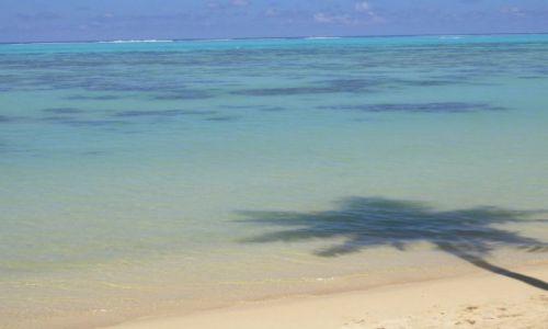 Zdjecie POLINEZJA FRANCUSKA / Wyspa MOOREA / Tuż przy polu namiotowym - północna częśc wyspy / Plaża