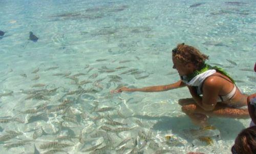 Zdjęcie POLINEZJA FRANCUSKA / Wyspa Fakarava / środek atolu ( 8 km do wioski) pole namiotowe / Karmienie
