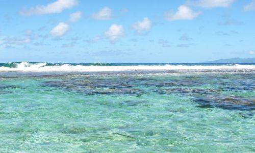 Zdjęcie POLINEZJA FRANCUSKA / Raiatea / Laguna / Przybój na koronoe rafy koralowej