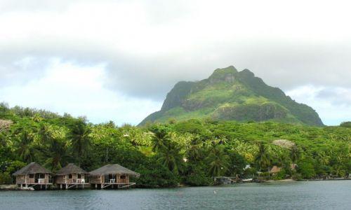 Zdjęcie POLINEZJA FRANCUSKA / Bora - Bora / Na skraju wyspy / Wewnątrz laguny