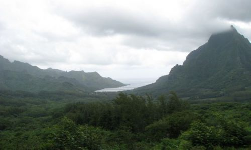 Zdjecie POLINEZJA FRANCUSKA / Wyspy Nawietrzne / Moorea / Zatoka Opunohu widok z Belvedere Point