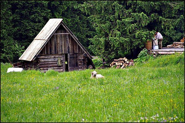 Zdjęcia: Tatry, Dolina Kościeliska, POLSKA