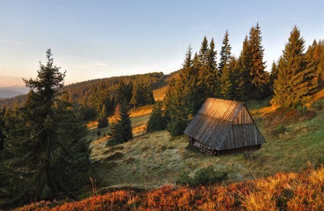 Zdjęcia: Beskid  Zywiecki, Śląskie, na gronicku, POLSKA