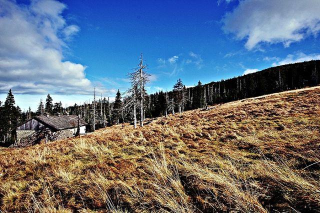 Zdjęcia: Sudety, W drodze na Szrenicę, POLSKA