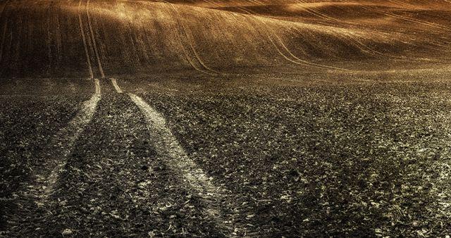 Zdjęcia: Droga do zapomnienia, POLSKA