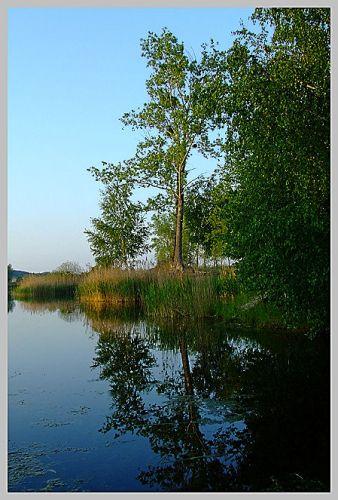 Zdjęcia: Gogolin, żwirownia, jeziorko, POLSKA