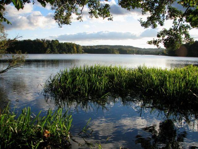 Zdjęcia: Kolbudy /k.Gdańska, Jezioro Kolbudzkie, POLSKA