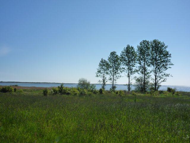 Zdjęcia: .., .., Polska :)  zdjecia z podrózy rowerem nad morze, POLSKA