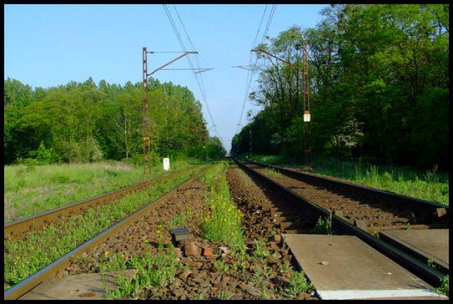 Zdjęcia: krapkowice, Ślask Opolski, w drodze, POLSKA