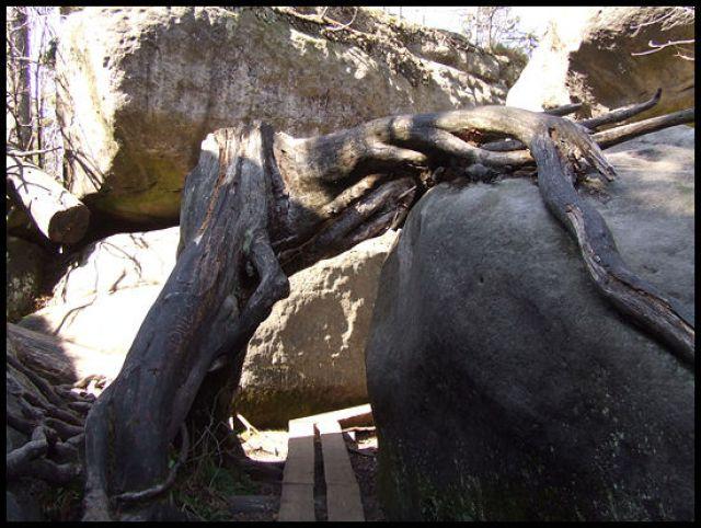 Zdjęcia: szczeliniec, Góry stołowe, przejście 1, POLSKA