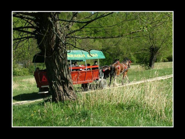 Zdjęcia: Bałtów, Kraina Małych Pienin, bałtowskie małe pieniny, POLSKA