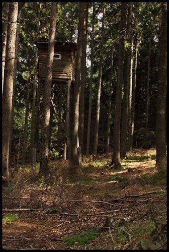 Zdjęcia: Pokrzywna, Góry Opawskie, budka strażnicza, POLSKA