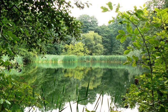 Zdjęcia: Bytom, Śląsk, nad wodą, POLSKA