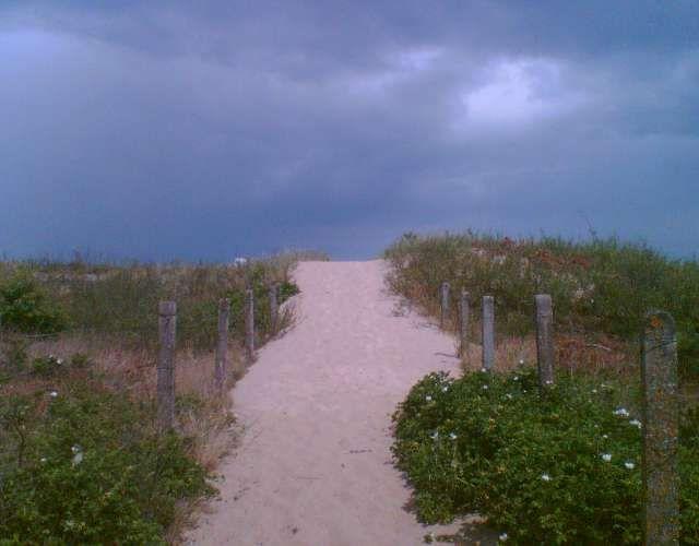 Zdjęcia: Sobieszewo, ,,Zejście na plaże'', POLSKA