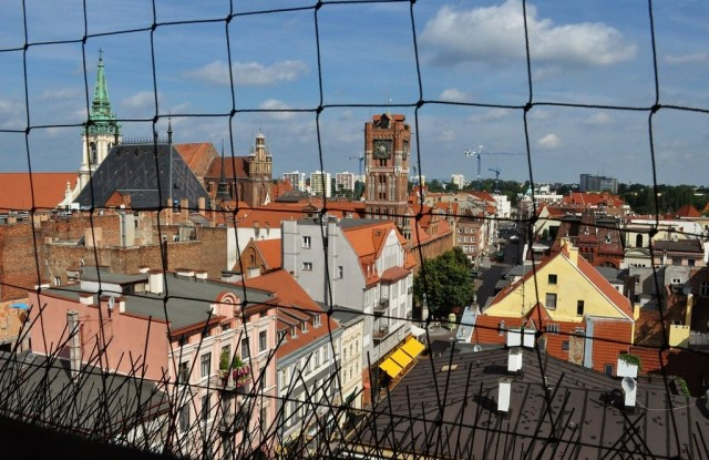 Zdjęcia: Toruń, Kujawsko-Pomorskie, Toruń, katedra św. Janów, widok z wieży, POLSKA