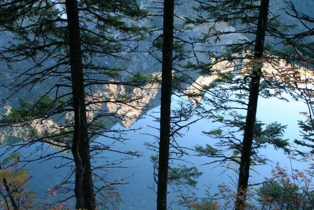 Zdjęcia: Tatry, Trzy drzewa w pierwszym rzędzie, POLSKA