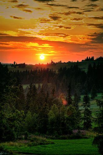 Zdjęcia: widok z okna pokoju ,który wynajmuję, Tatry, ...., POLSKA