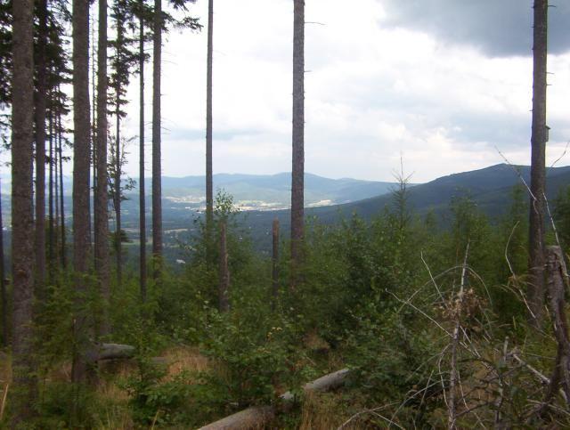 Zdjęcia: Czerwony szlak na Snieżkę, Karkonosze, Na szlaku, POLSKA