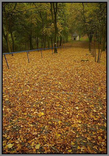 Zdjęcia: Góra Świętej Anny, woj.Opolskie, moja jesień 2, POLSKA