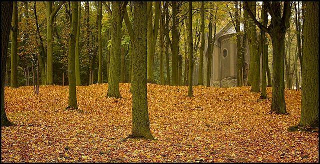 Zdjęcia: Góra Świętej Anny, woj.Opolskie, moja jesień 3, POLSKA