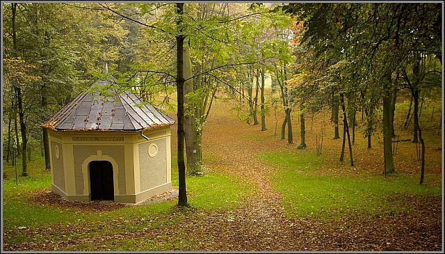 Zdjęcia: Góra Świętej Anny, woj.Opolskie, moja jesień 4, POLSKA