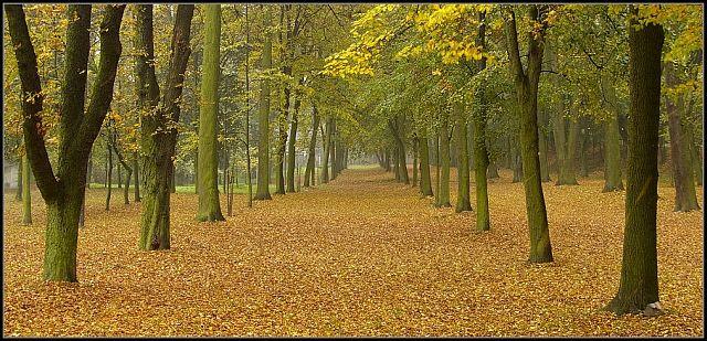 Zdjęcia: Góra Świętej Anny, woj.Opolskie, moja jesień 9, POLSKA