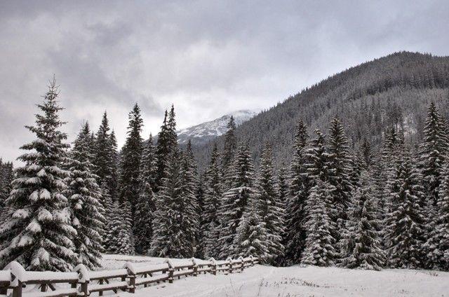 Zdjęcia: Hala Ornak, Tatry, Pierwszy śnieg, POLSKA