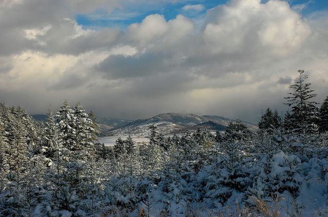 Zdjęcia: Beskid Żywiecki, Beskid Żywiecki, zima w Beskidach, POLSKA