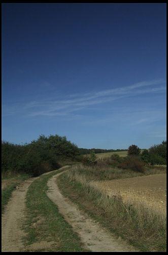 Zdjęcia: dojazd na Górę Świętej Anny od strony Oleszki., Ślask Opolski, w drodze, POLSKA