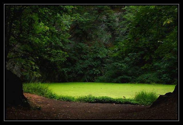 Zdjęcia: Pokrzywna, Góry Opawskie, tajemniczy staw, POLSKA