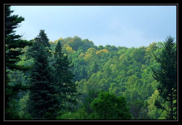 Zdjęcia: Pokrzywna, Góry Opawskie, widoczek, POLSKA