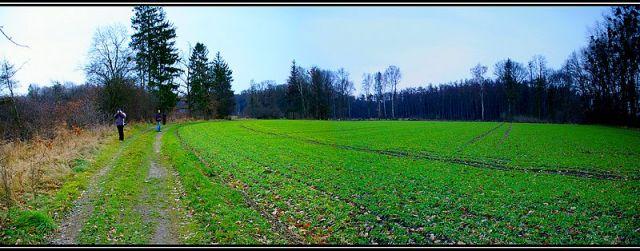 Zdjęcia: Krapkowice, Ślask Opolski, panorama ,zimno było :-), POLSKA