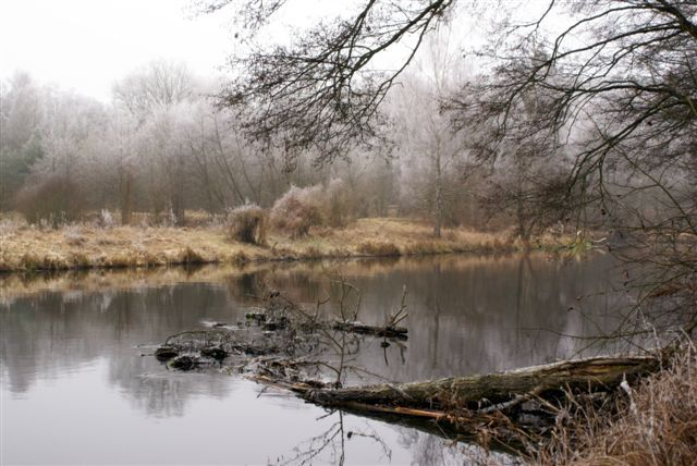 Zdjęcia: gdzieś w okolicach Jastrowia.., w czasie świąt warto oderwać się od stołu..., POLSKA