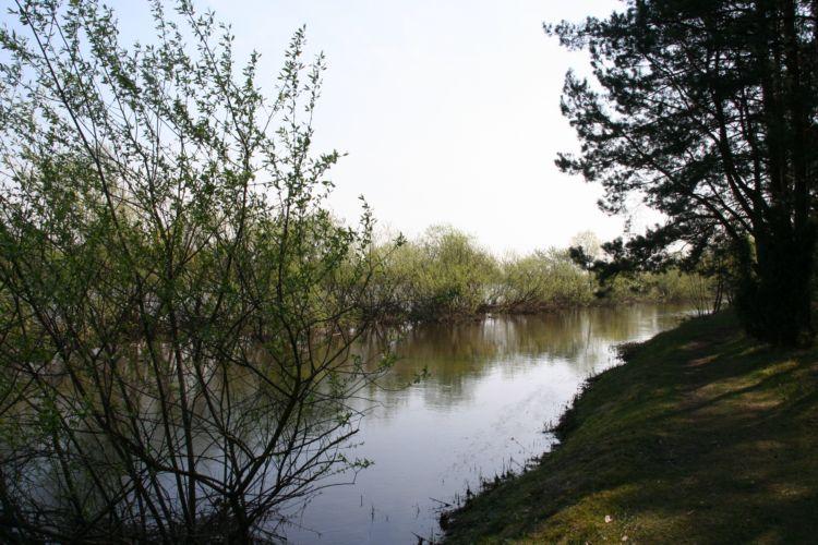 Zdjęcia: wies Młynarze, mazowsze, Bud wiosną, POLSKA