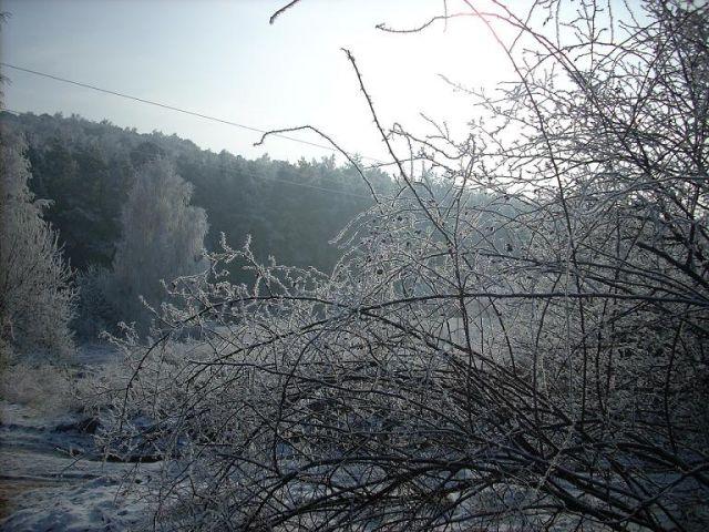 Zdjęcia: Okolice Góry Karczówka, Góry Świętokrzyskie, Zimowe klimaty, POLSKA