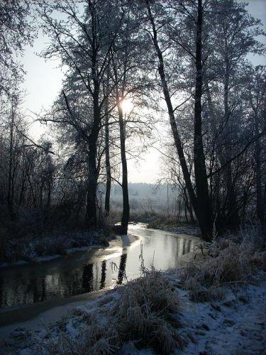 Zdjęcia: Okolice Górek Szczukowskich, Góry Świętokrzyskie, Rzeka Sufraganiec, POLSKA