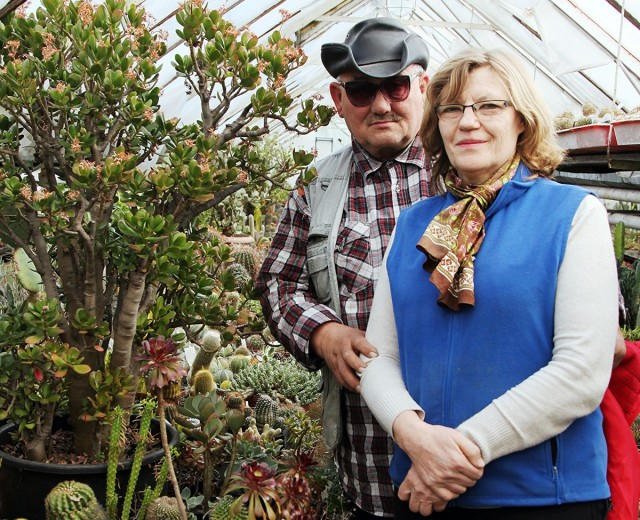 Zdjęcia: Hodowla kaktusów i innych sukulentów, Rumia, Łucja i Andrzej Hinz, POLSKA