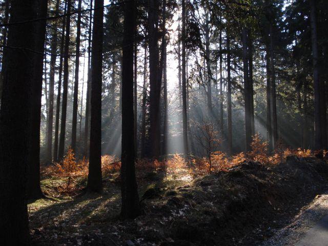 Zdjęcia: Przesieka, Karkonosze, Gra świateł cz.2, POLSKA